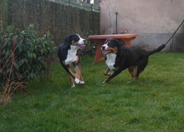 course poursuite entre le frère et la soeur, que du bonheur!